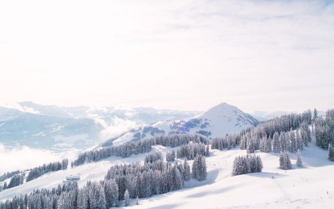 Newsletter – Winter News 2019